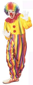 Clown Fancy Dress Costume